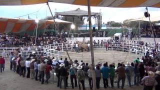 Repeat youtube video Los Destructores de Memo Ocampo En Santa Maria La Palma Alfajayucan Hgo 2011 Primeras Imagenes
