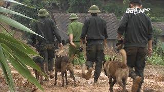 VTC14 | Khó khăn trong công tác tìm kiếm thi thể bị vùi lấp ở Hòa Bình