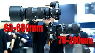 Sigma 70-200mm SPORT and 60-600mm HANDS ON