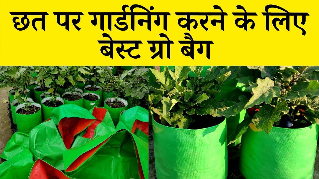 छत पर गार्डनिंग करने के लिए बेस्ट ग्रो बैग   Best Grow Bags Sizes For Terrace Gardening 🥒🍆