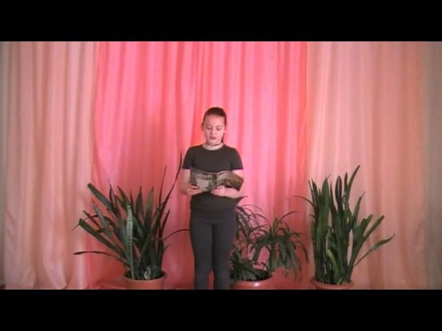 Изображение предпросмотра прочтения – АнгелинаСамсонова читает произведение «Мама, глянь-ка из окошка» А.А.Фета