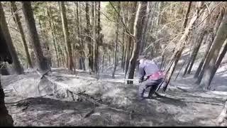 http://www.bacau.net/incendiu-de-vegetatie-in-asau/ Incendiu de vegetatie in Asau
