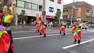 いなぎ藍の風 2017年ひのよさこい祭*多摩平演舞場②『飛翔』
