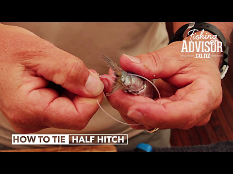 BAIT FISHNG: How To Tie A Half Hitch