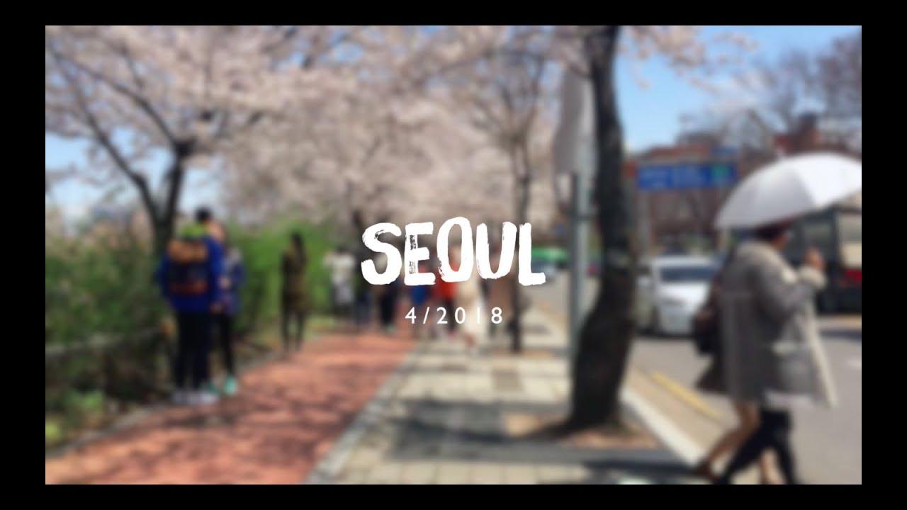 LoveTrip 1: Đón mùa xuân ở Hàn Quốc