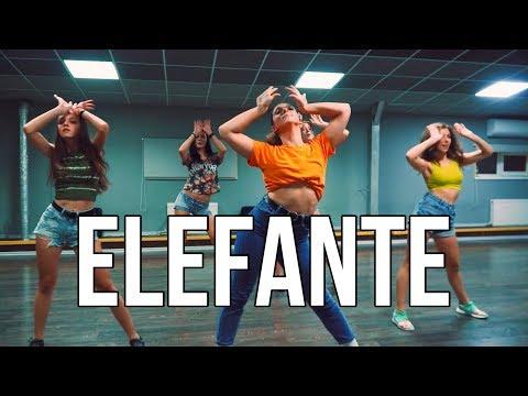 NK - ELEFANTE (#ELEFANTE) |  jazz funk beginners by OLYA