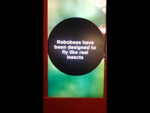 Robobees-Robotic Bees