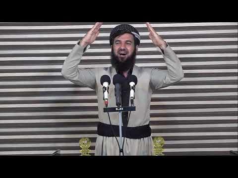 ماموستا سوران عبدالکریم تحميل الفيديو