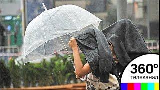 Столичный регион ждет дождливая, но теплая погода
