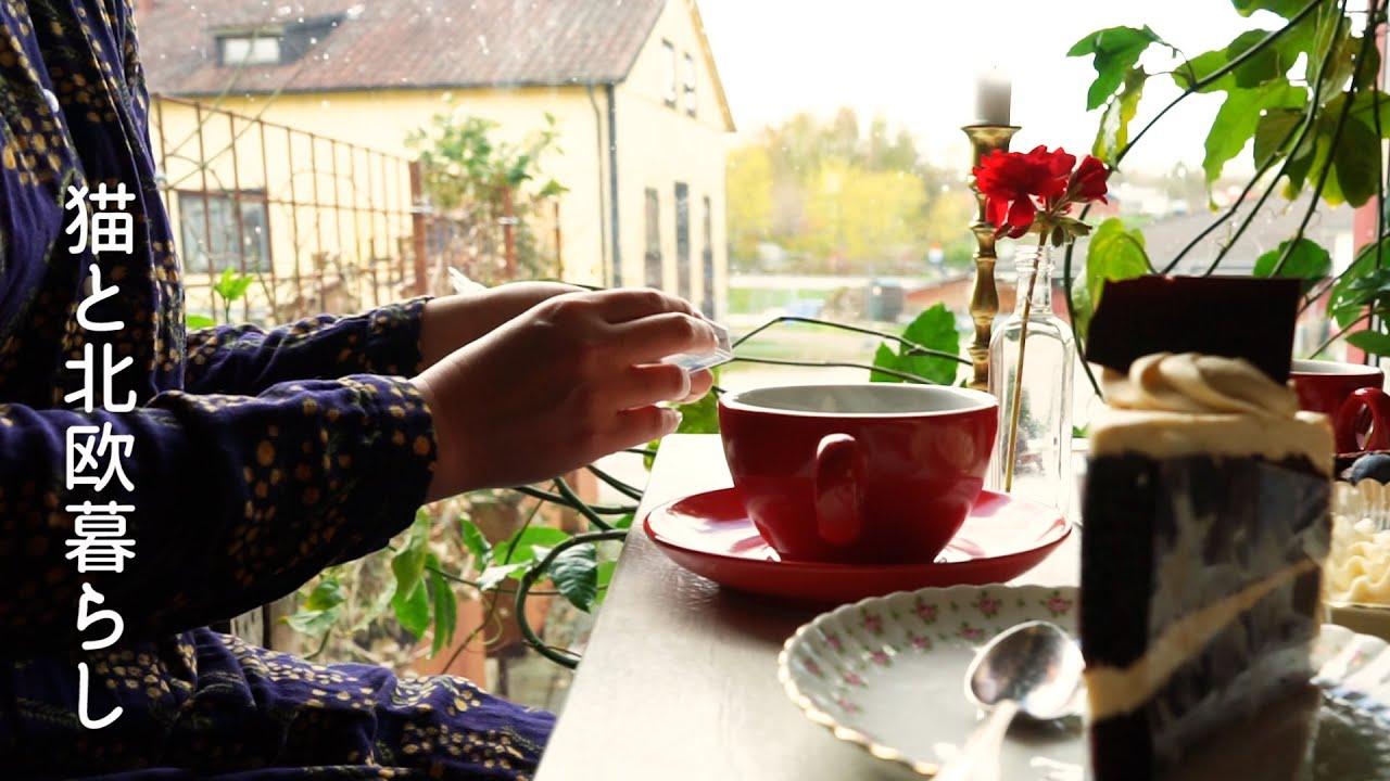 北欧暮らし🌿菜の花を楽しむ空中散歩 / 田舎のカフェで出会った美味しいケーキ / スウェーデンの伝統楽器を奏でる