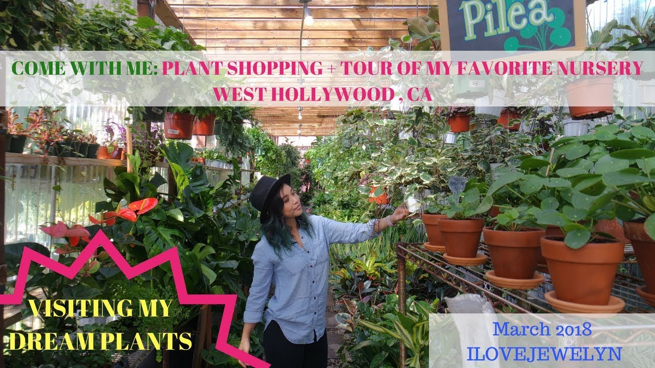 Come With Me Plant Ping Nursery Tour In West Hollywood March 2018 Ilovejewelyn