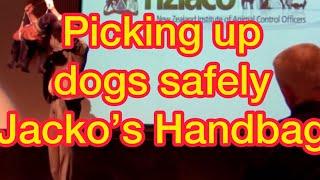 """Quick Tip 1 Safely Picking Up A Dog """"jacko's Handbag"""""""