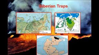 Permian-Triassic Mayhem: Earth's Largest Mass Extinction