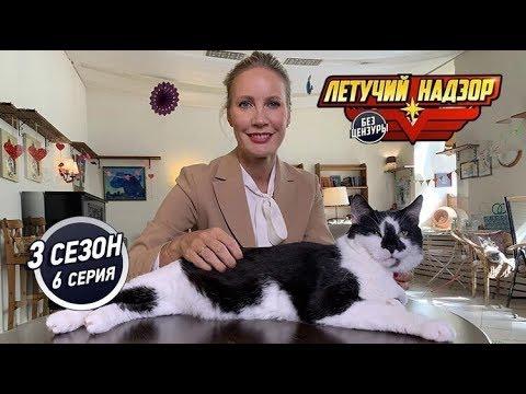 Вопрос: Почему толстые коты любят валяться на спине вверх ногами?