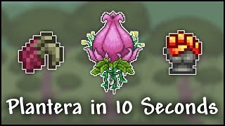 Video How to Kill Plantera in 10 Seconds  - Terraria 1.3 download MP3, 3GP, MP4, WEBM, AVI, FLV November 2018