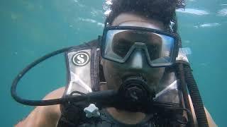 Scuba diving | Goa