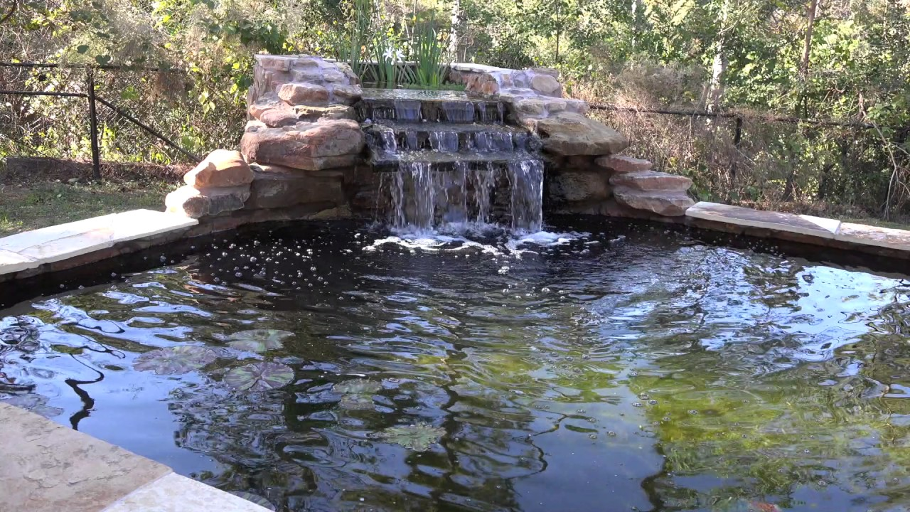 Koi pond waterfall youtube for Koi pond waterfall