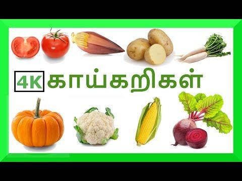 காய்கறிகள் - குழந்தை தமிழ்| Learn Vegetables Names Video For Kids And Children In Tamil