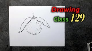 How to Draw Easy Orange step by step || Drawing Class 129
