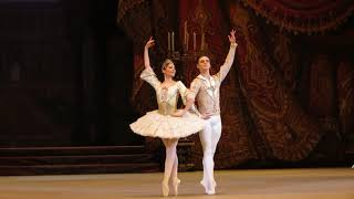 Sergei Polunin and Natalia Ershova - Paquita pas de deux. Bolshoi Theatre
