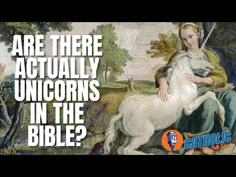 Are There Actually Unicorns In The Bible? | The Catholic Talk Show