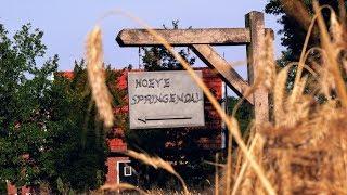 Camper TV 95 (Camping Hoeve Springendal, #Hezingen)
