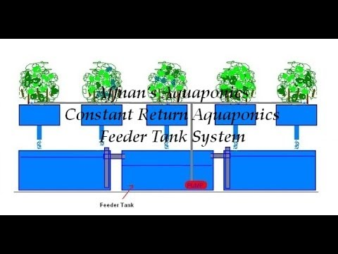 Basic Aquaponics Constant Return Aquaponics Feeder Tank System