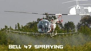 Bell 47 spraying almond trees near Laton, California