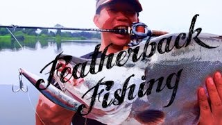 FEATHERBACK FISHING