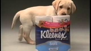 Kleenex & Guide Dogs Australia 2