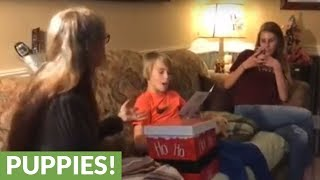 Kid totally shocked with new puppy surprise
