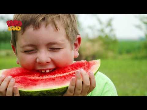 يا تري البطيخ فاكهة أم خضار Youtube