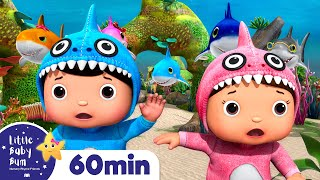 Baby Shark Dance   + More Nursery Rhymes & Kids Songs   Songs For Kids   Learn With Little Baby Bum