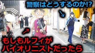 【ドッキリ】もしもルフィがバイオリンを弾きながら街を歩いたら【ワンピース Believe】
