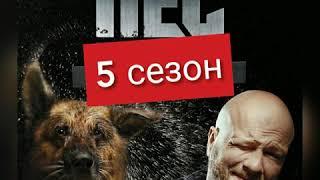 Сериал Пес 5 сезон