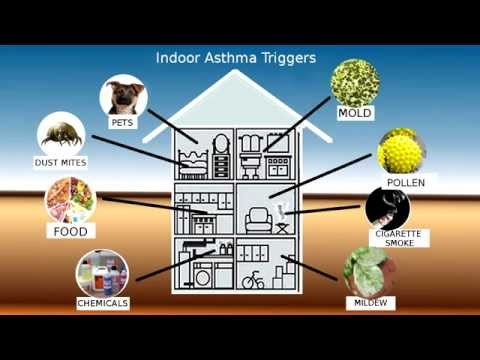 Asthma Triggers Part 1 - Second Hand Smoke