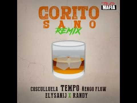 Tempo Ft. Ñengo Flow, Randy, Cosculluela, Elysanij – Corito Sano (Official Remix)