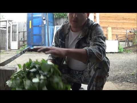как вязать веники 008 - YouTube