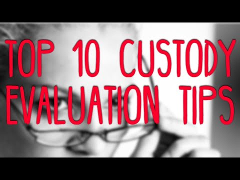 Top 10 Tips To Succeed In Your Child Custody Evaluation | The Palmer Law Firm