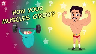 How your Muscles Grow?  - The Dr. Binocs Show | BEST LEARNING VIDEOS For Kids | Peekaboo Kidz