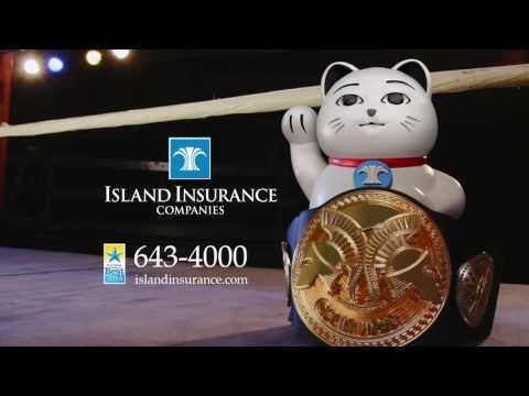 "Island Insurance - ""Big Hitter"""