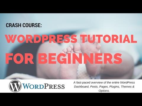 WordPress Tutorial for Beginners | Crash course
