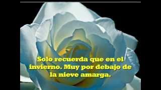 The Rose (Letra en Español)