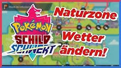 Wetter in der Naturzone ändern! | Pokémon Schild und Schwert Tutorial