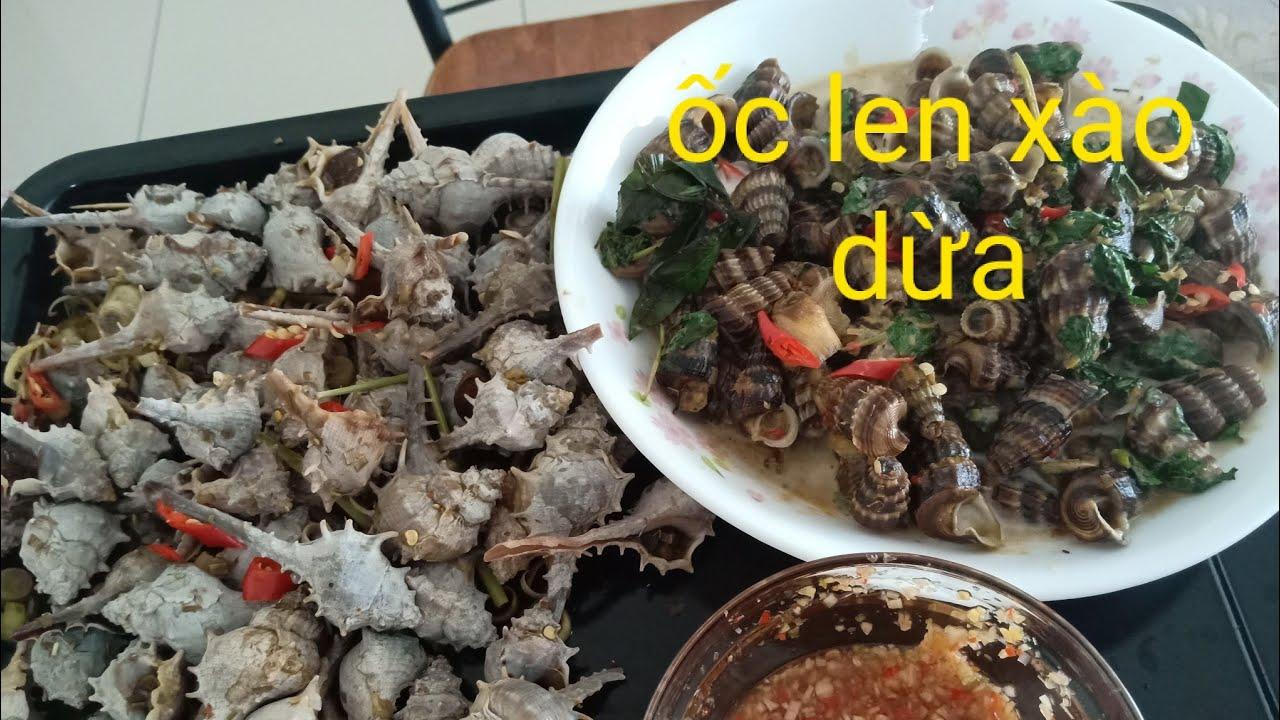 Ốc len xào dừa ăn cùng ốc Gai luộc sả