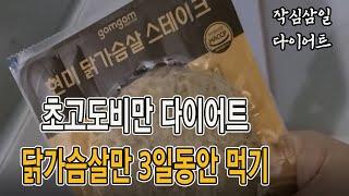 3일동안 닭가슴살먹기/한국민속촌방문 #닭가슴살다이어트#초고도비만