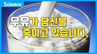 우유가 당신을 죽이고 있을지도 모르는 이유 (우유 지방…