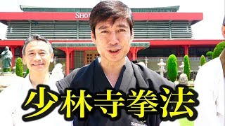空手家と少林寺拳法の幸せな出会い Wonderful encounter !Karate and Shorinji Kempo