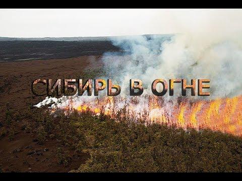 Сибирь ГОРИТ весь