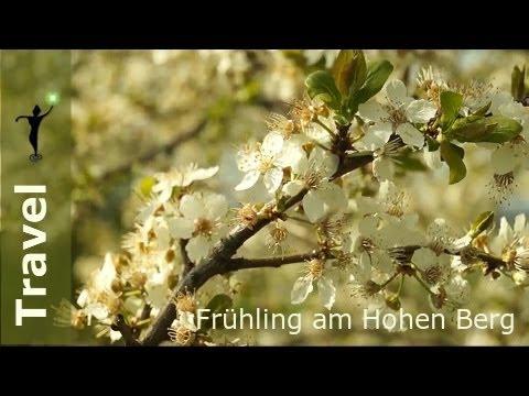 Frühling am Hohen Berg
